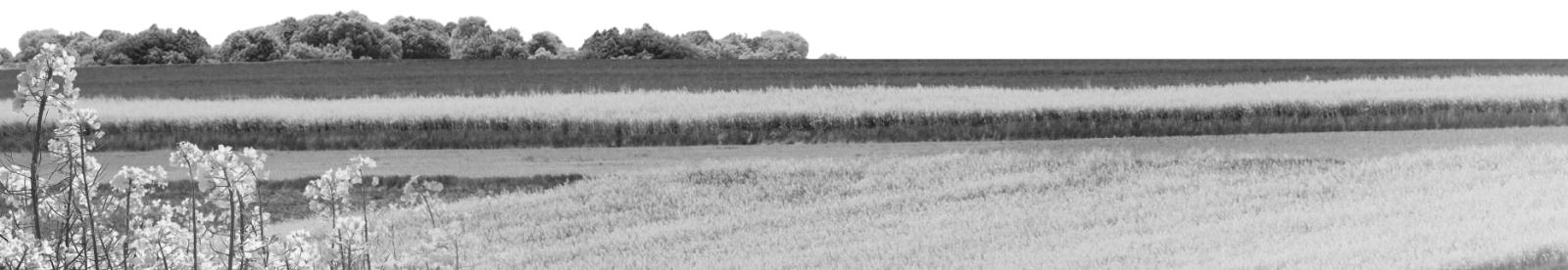 Oferta Wielkopolskiego Ośrodka Doradztwa Rolniczego