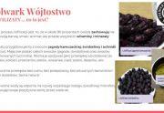 Liofilizaty z jagody kamczackiej i ze świdośliwy 50 g doypack