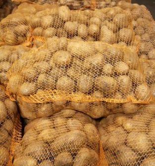 Ziemniaki jadalne Lord Wineta