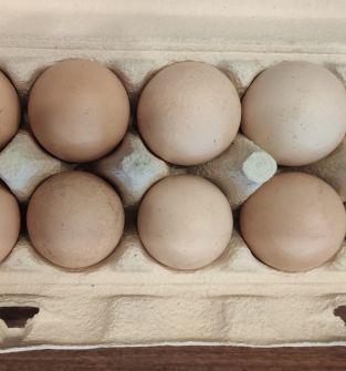 Świeże jaja kurze wiejskie