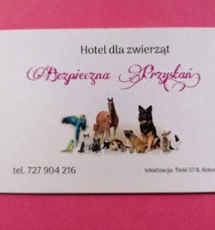 Hotel dla zwierząt Bezpieczna Przystań