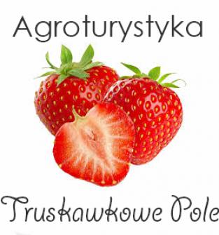 Agroturystyka Truskawkowe Pole