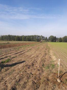 Usługi Rolnicze ROL-MAX